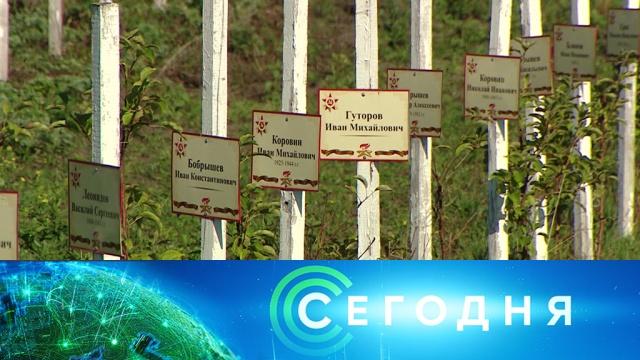 25 августа 2019 года. 16:00.25 августа 2019 года. 16:00.НТВ.Ru: новости, видео, программы телеканала НТВ