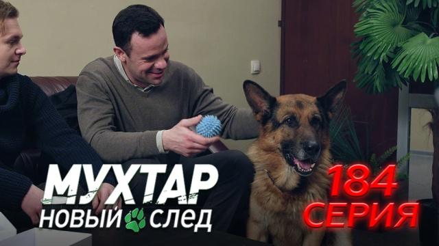 184-я серия.184-я серия.НТВ.Ru: новости, видео, программы телеканала НТВ