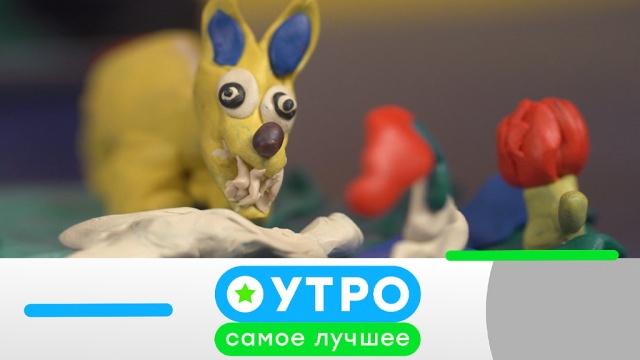 3 сентября 2019 года.3 сентября 2019 года.НТВ.Ru: новости, видео, программы телеканала НТВ