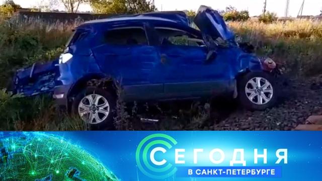 4 сентября 2019 года. 19:20.4 сентября 2019 года. 19:20.НТВ.Ru: новости, видео, программы телеканала НТВ