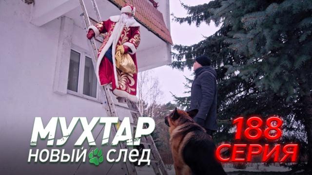 188-я серия.188-я серия.НТВ.Ru: новости, видео, программы телеканала НТВ
