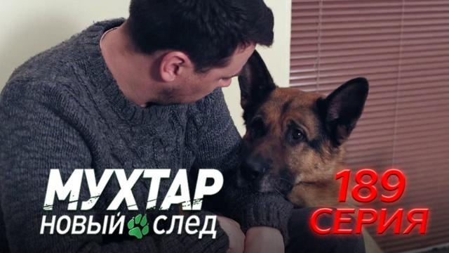 189-я серия.189-я серия.НТВ.Ru: новости, видео, программы телеканала НТВ