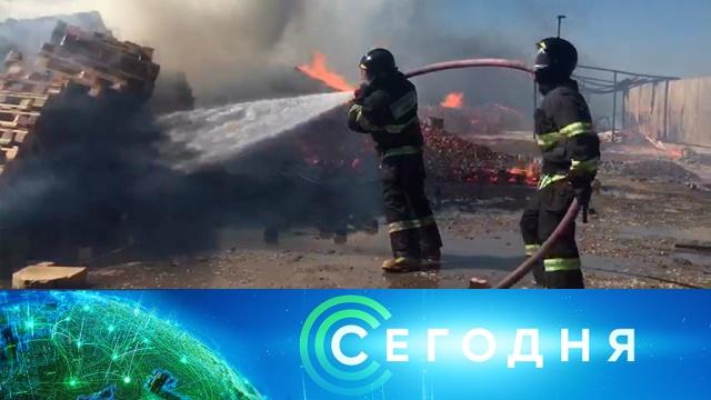 12 сентября 2019 года. 13:00.12 сентября 2019 года. 13:00.НТВ.Ru: новости, видео, программы телеканала НТВ