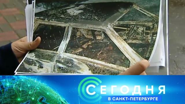 13сентября 2019 года. 19:20.13сентября 2019 года. 19:20.НТВ.Ru: новости, видео, программы телеканала НТВ