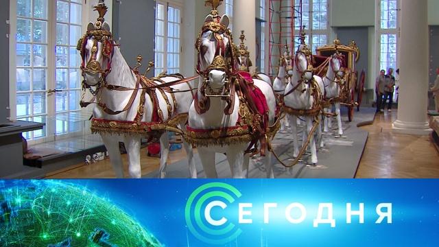 14 сентября 2019 года. 10:00.14 сентября 2019 года. 10:00.НТВ.Ru: новости, видео, программы телеканала НТВ