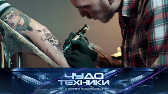 Выпуск от 15 сентября 2019 года.Опасности татуировок, новый «яблочный» смартфон ивыбор электрошашлычниц.НТВ.Ru: новости, видео, программы телеканала НТВ