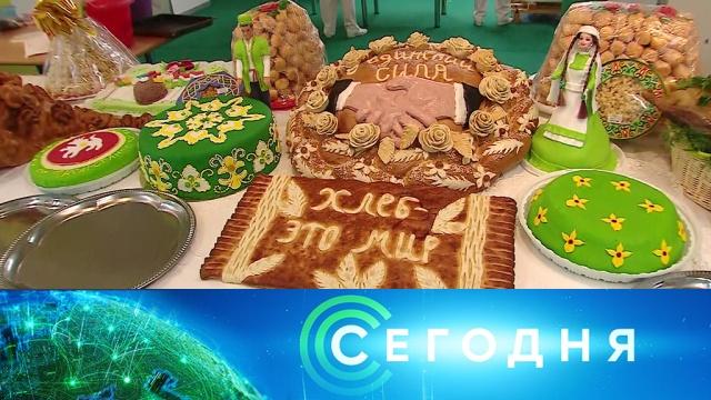 19 сентября 2019 года. 16:00.19 сентября 2019 года. 16:00.НТВ.Ru: новости, видео, программы телеканала НТВ