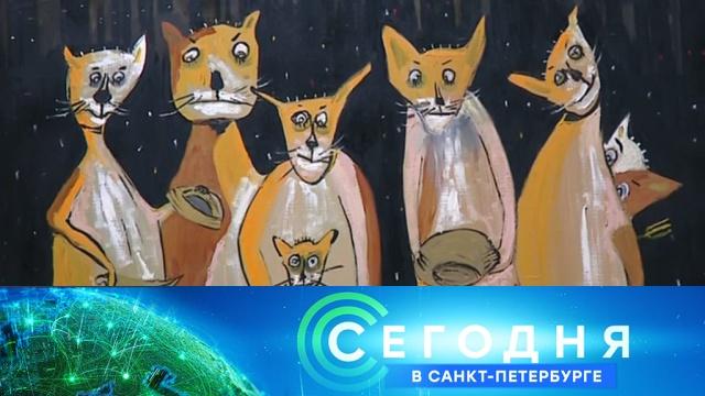 20 сентября 2019 года. 19:20.20 сентября 2019 года. 19:20.НТВ.Ru: новости, видео, программы телеканала НТВ