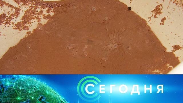 23 сентября 2019 года. 13:00.23 сентября 2019 года. 13:00.НТВ.Ru: новости, видео, программы телеканала НТВ