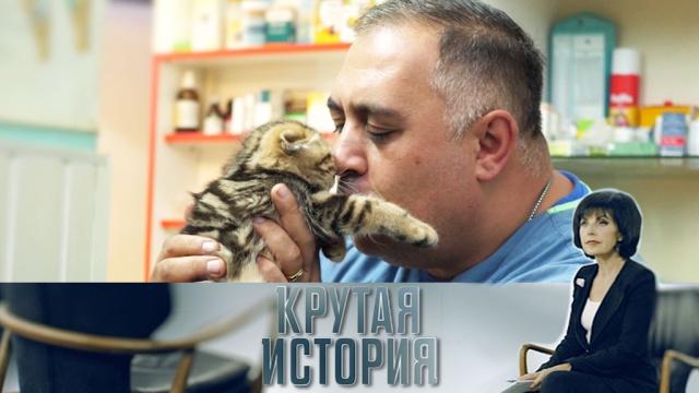 «Крутая история» с Татьяной Митковой.НТВ.Ru: новости, видео, программы телеканала НТВ