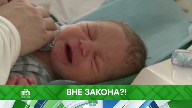Выпуск от 1 октября 2019 года.Вне закона?!НТВ.Ru: новости, видео, программы телеканала НТВ