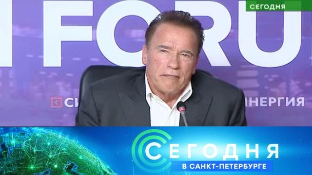 4 октября 2019 года. 16:15.4 октября 2019 года. 16:15.НТВ.Ru: новости, видео, программы телеканала НТВ