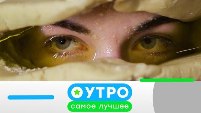 8октября 2019 года.8октября 2019 года.НТВ.Ru: новости, видео, программы телеканала НТВ