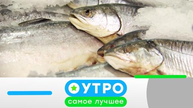 11 октября 2019 года.11 октября 2019 года.НТВ.Ru: новости, видео, программы телеканала НТВ