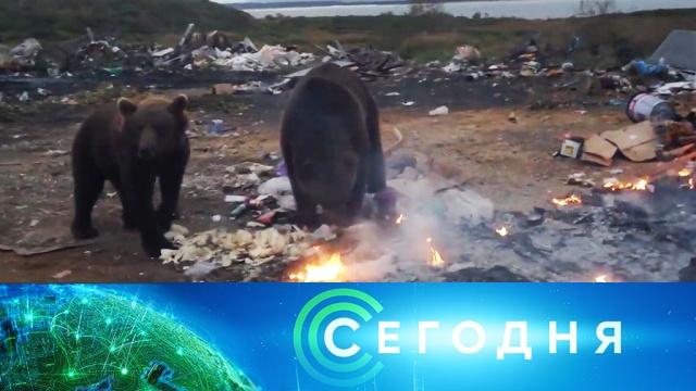 14 октября 2019 года. 13:00.14 октября 2019 года. 13:00.НТВ.Ru: новости, видео, программы телеканала НТВ