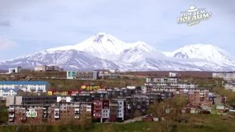 Удивительная Камчатка: вулканы, танцы дружбы ипрожорливые еврашки