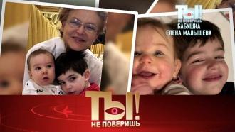 Бабушка Елена Малышева, акушер Никита Джигурда и«запрещенка» Филиппа Киркорова