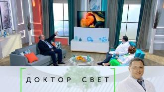 Выпуск от 18 октября 2019 года.Что такое коксартроз и как худеть правильно.НТВ.Ru: новости, видео, программы телеканала НТВ