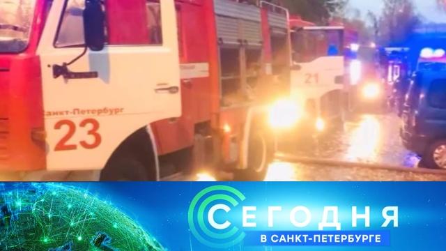 17 октября 2019 года. 19:20.17 октября 2019 года. 19:20.НТВ.Ru: новости, видео, программы телеканала НТВ