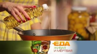 На каком масле лучше жарить, какие сосиски безопасные иможноли класть мед вгорячий чай? «Еда живая имёртвая»— всубботу в11:00на НТВ