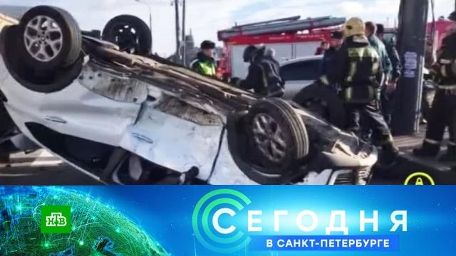 23 октября 2019 года. 16:15.23 октября 2019 года. 16:15.НТВ.Ru: новости, видео, программы телеканала НТВ