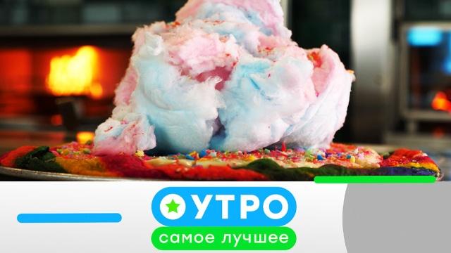 24 октября 2019 года.24 октября 2019 года.НТВ.Ru: новости, видео, программы телеканала НТВ