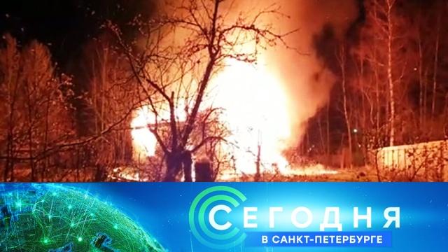 30 октября 2019 года. 16:15.30 октября 2019 года. 16:15.НТВ.Ru: новости, видео, программы телеканала НТВ
