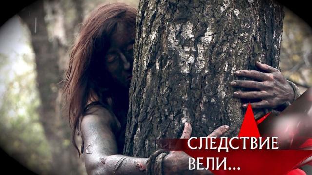 Выпуск от 3 ноября 2019года.«Лиходеи».НТВ.Ru: новости, видео, программы телеканала НТВ