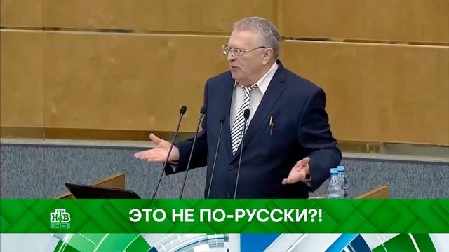 Выпуск от 5 ноября 2019 года.Это не по-русски?!НТВ.Ru: новости, видео, программы телеканала НТВ