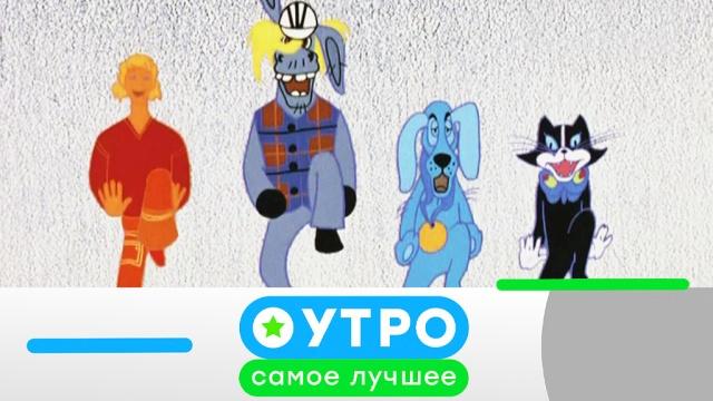 6 ноября 2019 года.6 ноября 2019 года.НТВ.Ru: новости, видео, программы телеканала НТВ
