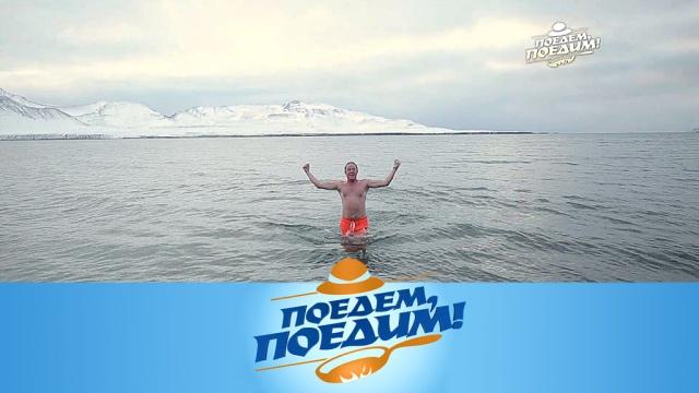 Выпуск от 9 ноября 2019 года.Арктика: фантастический Шпицберген, белые медведи, рыбный «Наполеон» итреска под шубой.НТВ.Ru: новости, видео, программы телеканала НТВ