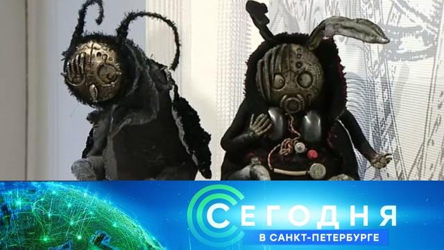 7 ноября 2019года. 19:20.7 ноября 2019года. 19:20.НТВ.Ru: новости, видео, программы телеканала НТВ