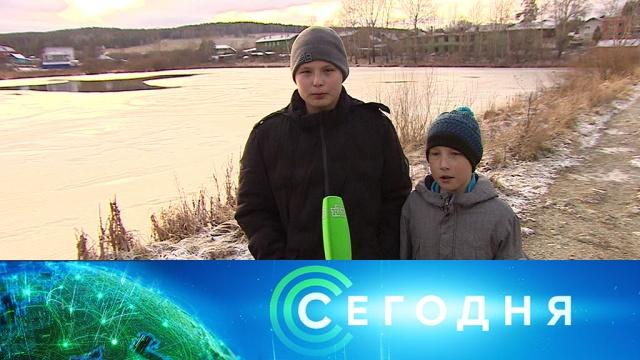 11 ноября 2019 года. 13:00.11 ноября 2019 года. 13:00.НТВ.Ru: новости, видео, программы телеканала НТВ
