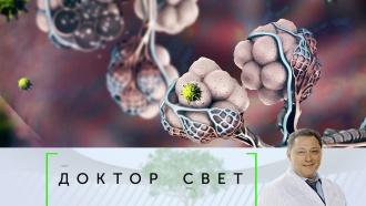 Выпуск от 15 ноября 2019 года.Последствия пневмонии ився правда опрививках.НТВ.Ru: новости, видео, программы телеканала НТВ