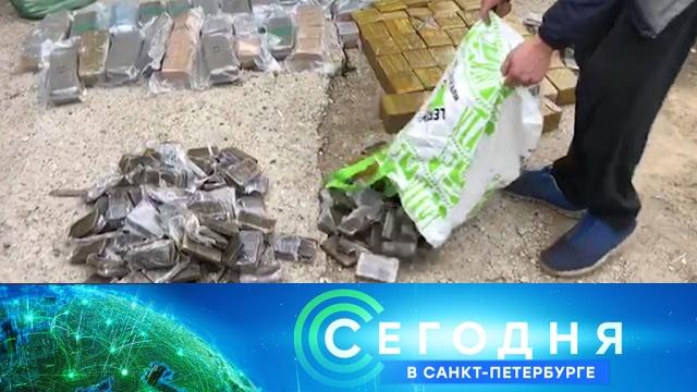 13 ноября 2019 года. 16:15.13 ноября 2019 года. 16:15.НТВ.Ru: новости, видео, программы телеканала НТВ