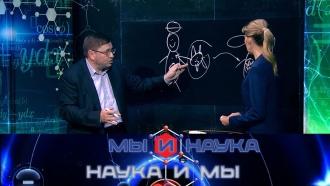 Выпуск от 18 ноября 2019 года.Через 10 лет антибиотики запретят?НТВ.Ru: новости, видео, программы телеканала НТВ