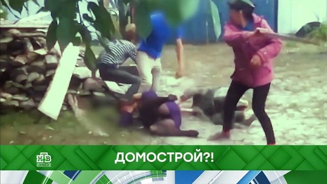 Выпуск от 21 ноября 2019 года.Домострой?!НТВ.Ru: новости, видео, программы телеканала НТВ