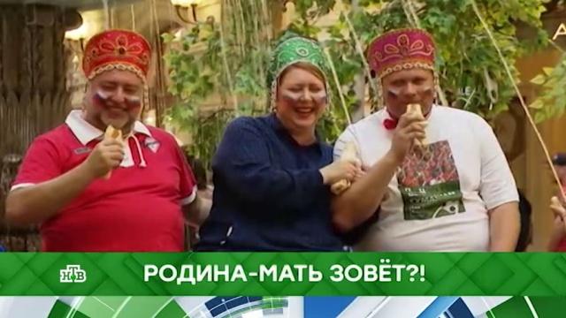 Выпуск от 22ноября 2019года.Родина-мать зовет?!НТВ.Ru: новости, видео, программы телеканала НТВ
