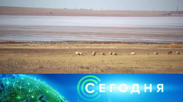 28 ноября 2019 года. 10:00.28 ноября 2019 года. 10:00.НТВ.Ru: новости, видео, программы телеканала НТВ