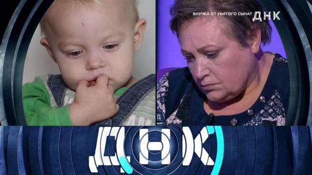 Выпуск от 3декабря 2019 года.«Внучка от убитого сына?».НТВ.Ru: новости, видео, программы телеканала НТВ
