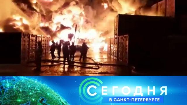 3 декабря 2019 года. 16:15.3 декабря 2019 года. 16:15.НТВ.Ru: новости, видео, программы телеканала НТВ