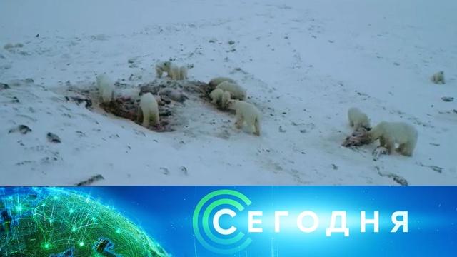 6 декабря 2019 года. 19:00.6 декабря 2019 года. 19:00.НТВ.Ru: новости, видео, программы телеканала НТВ