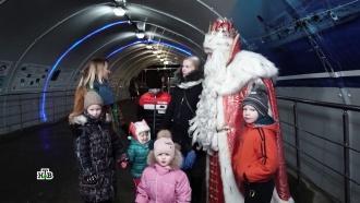 Сотни сюрпризов приготовил Дед Мороз юным нижегородцам