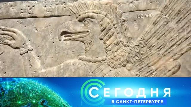 10 декабря 2019 года. 19:20.10 декабря 2019 года. 19:20.НТВ.Ru: новости, видео, программы телеканала НТВ