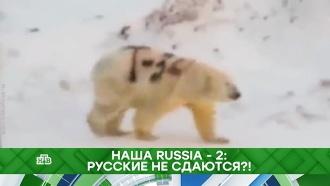 Наша Russia— 2: русские не сдаются?!
