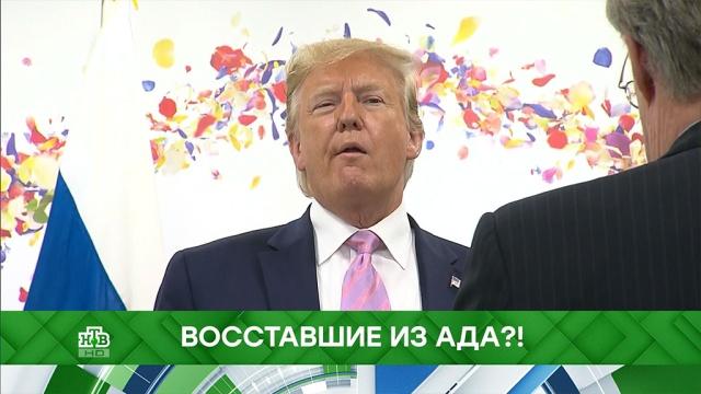 Выпуск от 16 декабря 2019 года.Восставшие из ада?!НТВ.Ru: новости, видео, программы телеканала НТВ