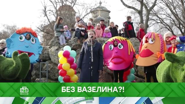 Выпуск от 18декабря 2019год.Без вазелина?!НТВ.Ru: новости, видео, программы телеканала НТВ