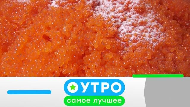 25 декабря 2019 года.25 декабря 2019 года.НТВ.Ru: новости, видео, программы телеканала НТВ