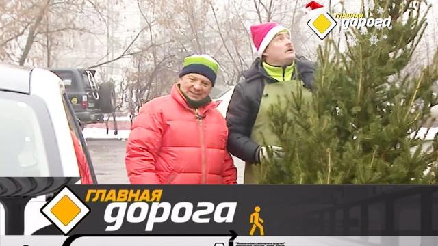 Выпуск от 28 декабря 2019 года.Правильная перевозка елки, опасные зимние развлечения и тест машины с пробегом.НТВ.Ru: новости, видео, программы телеканала НТВ