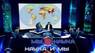 Выпуск от 28 октября 2020 года.Через 10 лет наука решит проблему перенаселения?НТВ.Ru: новости, видео, программы телеканала НТВ
